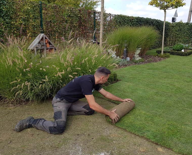 Création de jardin et de pelouse à Ath et dans tout le Hainaut
